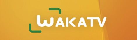 (Français) Waka TV, La chaîne de l'Afrique qui entreprend
