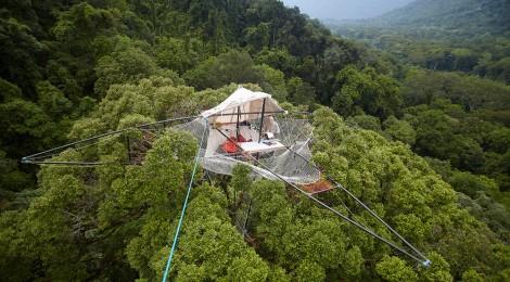 Forêts du Gabon