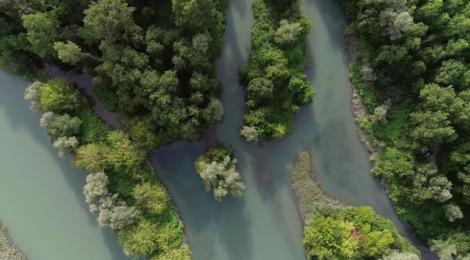 Le Rhône, un écrin de vie en sursis